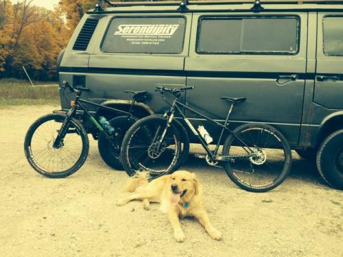 serendipity-bikes-van-dog