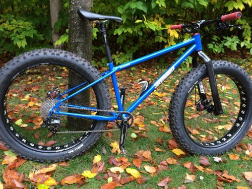 Custom Fat Bike